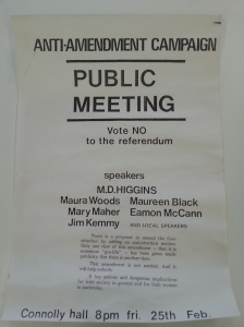 Anti-Amendment meeting Cork